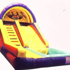 16ft Fun Slide